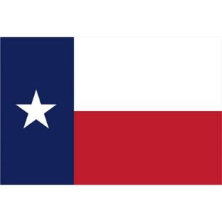 Texas State Flag   4 x 6