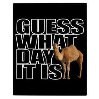 Guess What Day It Is Hump Day Camel Photo Plaque