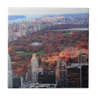 A view above Autumn in Central Park 01 Ceramic Tiles
