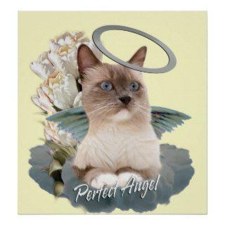 Ragdoll Perfect Angel Kitten poster
