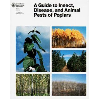 A Guide to Insect, Disease, and Animal Pests of Poplars (Agriculture Handbook, 677) Michael E. Ostry, Louis F. Wilson, Harold S. McNabb, Lincoln M. Moore Books