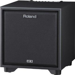 Roland CM 220 Cube Monitor Speaker System Musical Instruments