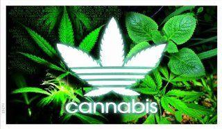 ADV PRO ba765 Cannabis Marijuana Weed High Life Banner Sign   Prints