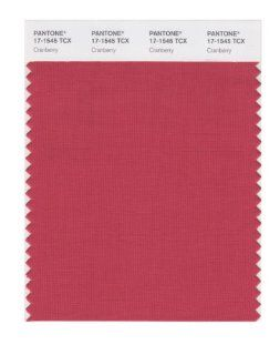 PANTONE SMART 17 1545X Color Swatch Card, Cranberry   Wall Decor Stickers