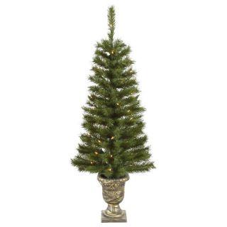 Vickerman 4 ft. Potted Walton Pine Pre Lit Christmas Tree   Christmas Trees