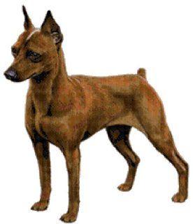 Miniature Pinscher Dog Counted Cross Stitch Pattern: Arts, Crafts & Sewing