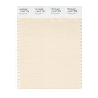 PANTONE SMART 11 0907X Color Swatch Card, Pearled Ivory   House Paint