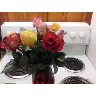 One Dozen Rainbow Roses (with FREE glass vase)   Flowers  Fresh Cut Format Rose Flowers  Grocery & Gourmet Food