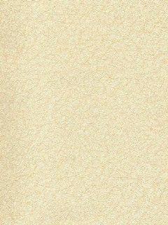 Texture Look Wallpaper Pattern #9X11Suhugb