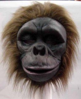 PM6779590/273 Bongo The Monkey Chimp Mask: Toys & Games