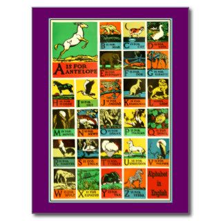 Animal abc alphabet Chart  teachers and learners Post Cards