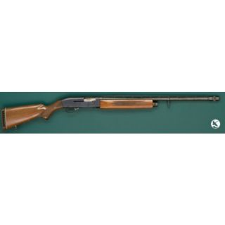 Roebuck  Co. Model 300 Ted Williams Shotgun UF103510418