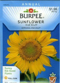 Burpee 46615 Sunflower Kid Stuff Seed Packet  Flowering Plants  Patio, Lawn & Garden