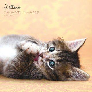 Magnet & Steel Kittens Calendar Wall Calendar  Pet Memorial Products