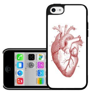 Medical Anatomical Red Heart Diagram Iphone 5c Hard Case: Cell Phones & Accessories