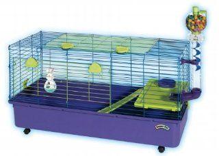 Kaytee Guinea Pig Home Ez Clean : Pet Cages : Pet Supplies