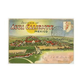 Agua Caliente, Tijuana Mexico (1930's Souvenir Postcard Folder) #D 992 Caliente Race Track, Emma Chesrown Books