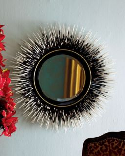 Porcupine Quill Mirror   Janice Minor