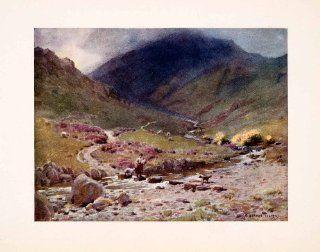 1908 Print Stepping stones Far Easedale Grasmere England Alfred Cooper Sheep Dog   Original Color Print