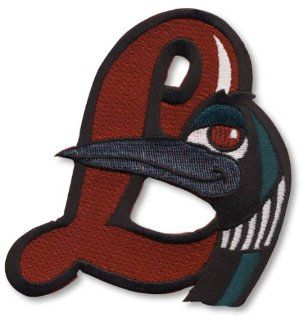 Great Lakes Loon Hat Logo Patch  Sports Fan Sleeve Patches  Sports & Outdoors