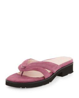 Tacy Suede Thong Sandal, Magenta   Taryn Rose   Magenta (39.0B/9.0B)