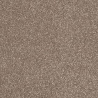 Home Decorators Collection Ashby Woods   Color Putty 12 ft. Carpet HDA170TX10