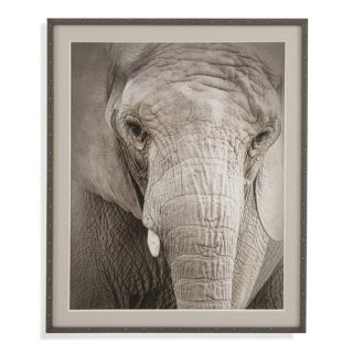 Belgian Luxe Soulful Framed Photographic Print by Bassett Mirror