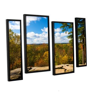 Virginia Kendall by Cody York 4 Piece Floater Framed Photographic