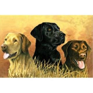 Reeves 446605 Paint By Number Artists Collection 12 inch x 16 inch  Labs In Marsh