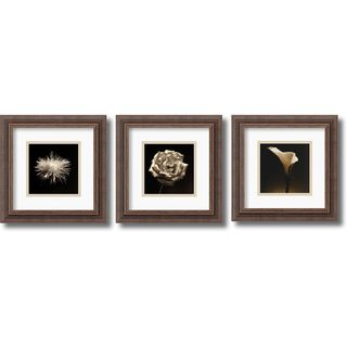 Walter Gritsik Flower Series: Rustic Framed Art Print Set 12 x 12
