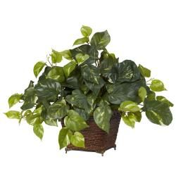 Pothos with Coiled Rope Planter Silk Plant   13908187