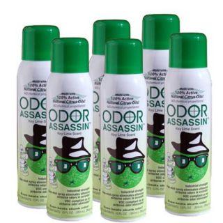Odor Assassin 12 oz. Air Freshener Fine Mist Spray, Key Lime   6 Pack
