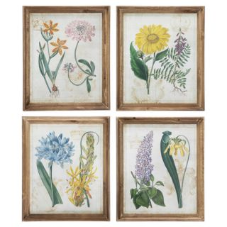 Antique Botanicals 4 Piece Painting Print Set by Winward Designs