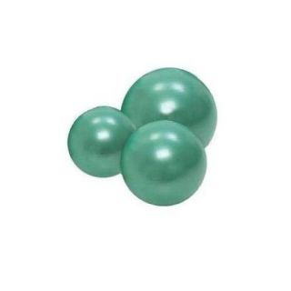 Physiotherapy Gymnic Classic Plus Ball in Green (22 in.)